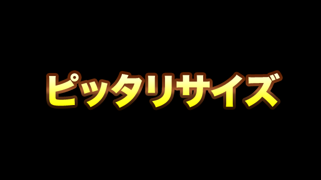 2018/09/05/ 17:50ピッタリサイズ