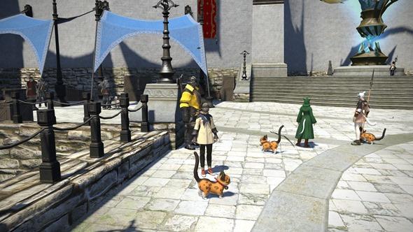 みんな、タイニークァールの散歩してる!大人気のペットだね。
